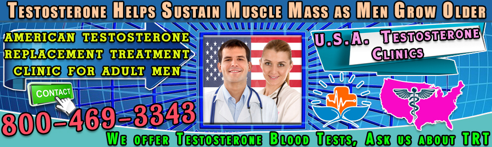 26 26 testosterone helps sustain muscle mass as men grow older
