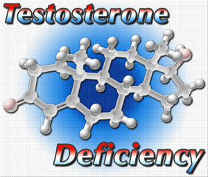 herbal supplement testosterone