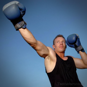 Improve your testosterone testing with boxing