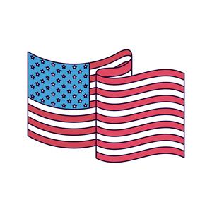 USA Flag 429964993