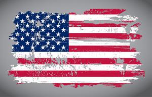 USA Flag 450636892
