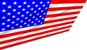 USA Flag 461456491