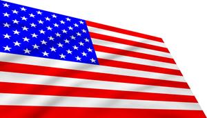USA Flag 461456503