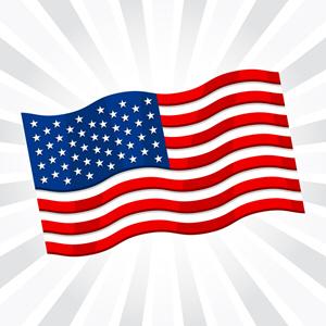 USA Flag 476072899