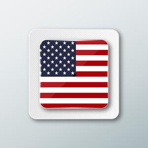 USA Flag 575500525