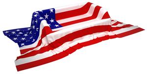 USA Flag 57860083