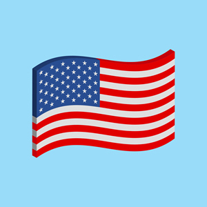 USA Flag 616282388