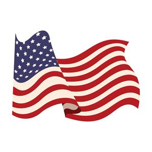 USA Flag 630231863