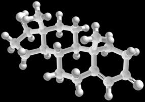 male hormone test testosterone