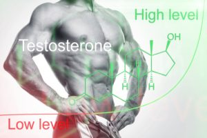 low and high testosterone levels