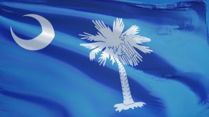 south carolina state flag 300x169