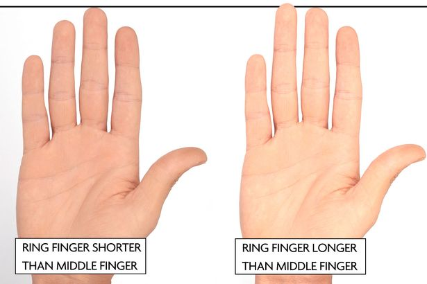 male finger length